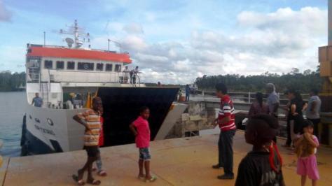 Trans Papua Logistik
