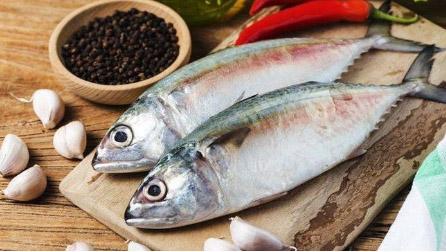 Ikan Tongkol Rp.30.000/Kg
