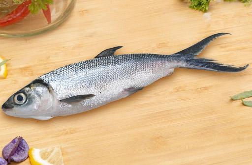 Ikan Bandeng Rp.40.000/Kg
